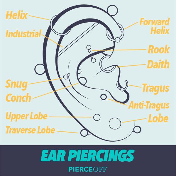 Ear Piercing Chart, Types of Ear Piercings