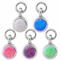 Steel Round Opal Barbell Charm image