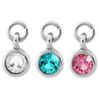 Steel Round Jewelled Barbell Charm image