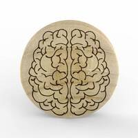 Custom Laser Engraved Crocodile Wood Plug - 'Brain' image