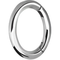 Surgical Steel Oval Hinged Rook Ring image