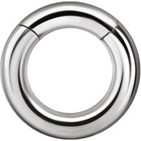Heavy Gauge Surgical Steel Hinged Segment Ring image