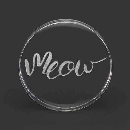 Custom Laser Engraved Clear Acrylic Plug : 'Meow' : 14mm