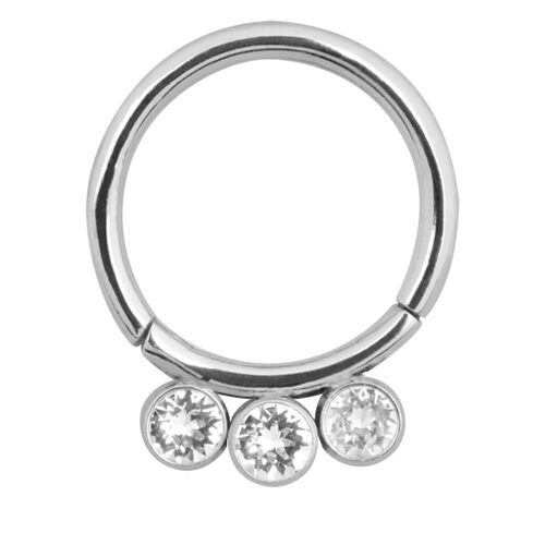 Jewelled Hinge Segment Ring : 1.6mm (14ga) x 8mm x Clear Crystal